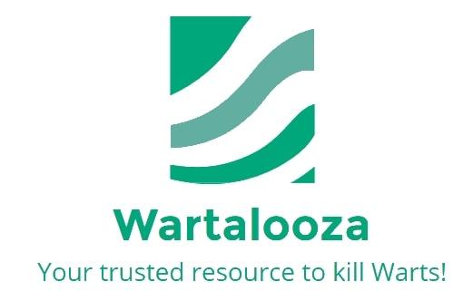 Wartalooza Logo